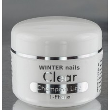 Winter nails Gel UV